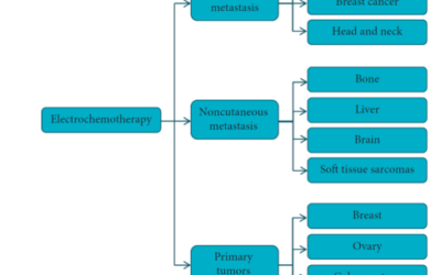 ΗΛΕΚΤΡΟΧΗΜΕΙΟΘΕΡΑΠΕΙΑ: Η νέα πρωτοποριακή προσέγγιση για θεραπεία όγκων